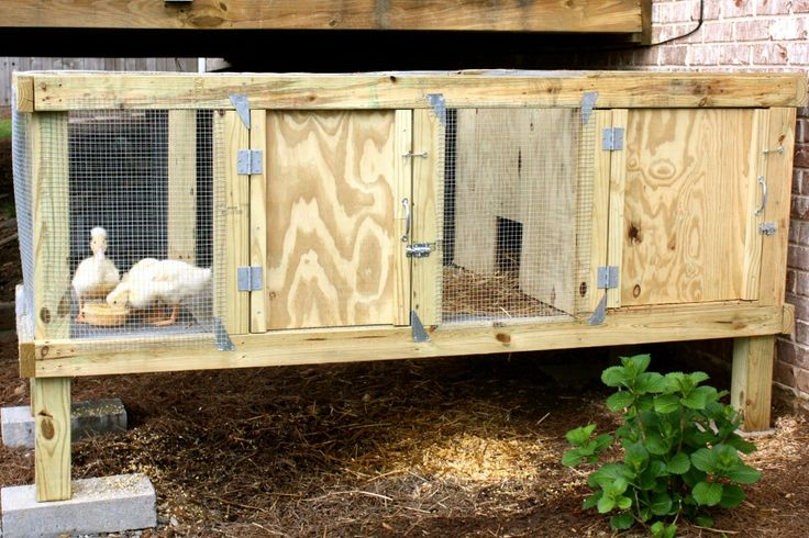 22 curated outdoor animal pens ideas by ladv320 quails for Movable duck house