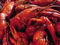 What is the history of Cajun Cooking? Ever wonder what the real difference is between Louisiana Creole and Cajun Cuisine? #food #dinner #recipes  http://qoo.ly/kfv5s
