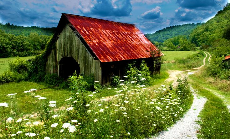 Red roof barn - I love the Queen Anne's Lace in the foreground.