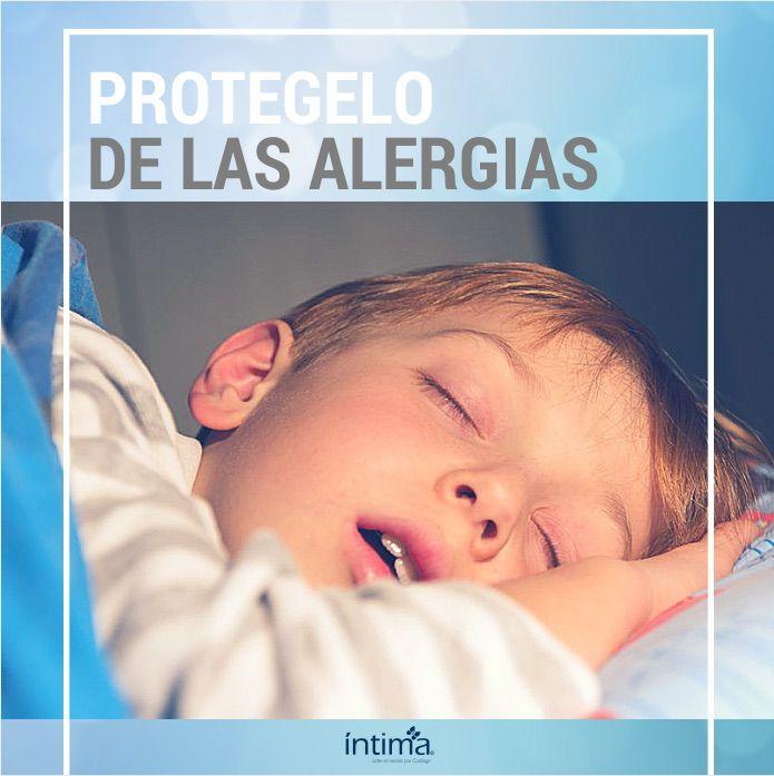 Duvet o edredón: protégelo de las alergias. Generalmente las alergias son el resultado de polvo y suciedad recogida en el edredón, no a la pluma en sí, con excepciones, por supuesto. No es necesario que seas alérgico a las aves para que puedas sufrir de alergias a un duvet de plumas. Las alergias al polvo y a los ácaros que allí crecen son la fuente de los problemas respiratorios mas comunes.