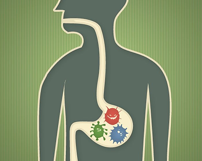 Gut Health, Stress and Digestion. #GutHealth #Stress #Digestion