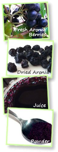Benefits of Buying Organic Aronia Berries. I've never heard of these berries but might need to find them!