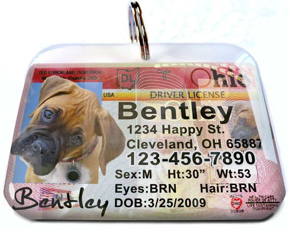 Ohio driver license Personalized Custom ID Tags by CustomPetTags