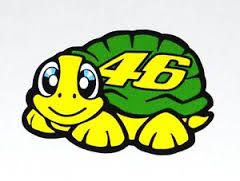 valentino rossi turtle helmet - Google Search