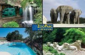 Zoo parc de Beauval à Saint Aignan - Chambres d'hôtes, maisons d'hôtes Guesthouse à proximité
