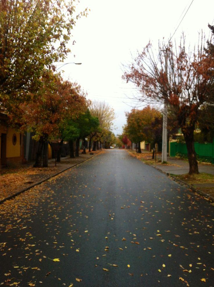 Otoño. 8 norte, Talca. Chile