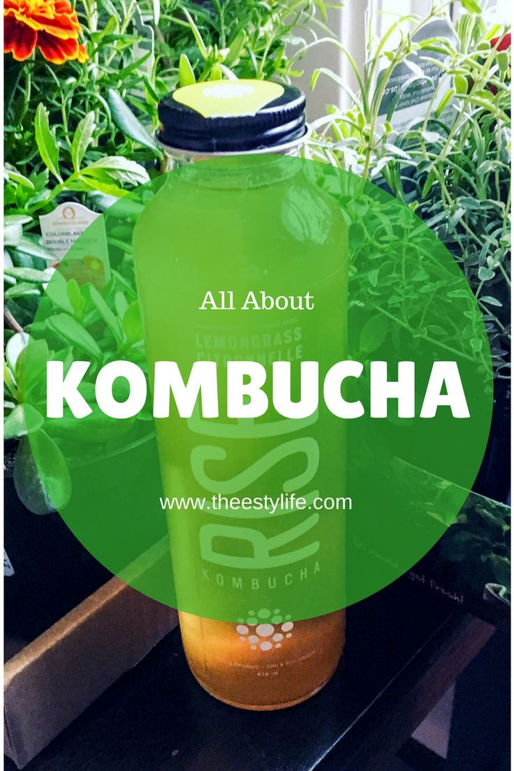 Kombucha is a great probiotic rich drink that aids in health and healing of the gut and body!