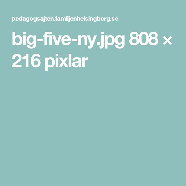 big-five-ny.jpg 808 × 216 pixlar