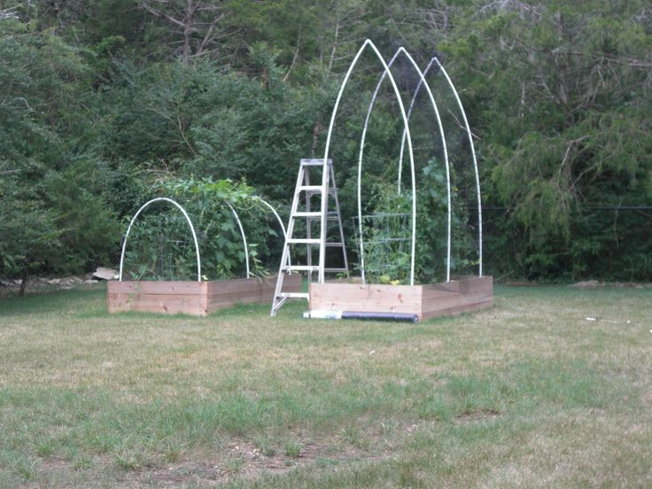 55 best images about garden pvc on pinterest for Pvc pipe garden projects
