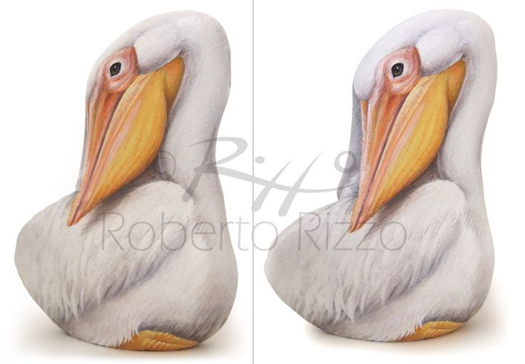White Pelican - acrylic on rock |  Rock Painting Art by Roberto Rizzo of Roberto Rizzo | www.robertorizzo.com