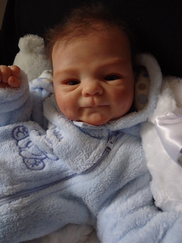 17 Best Images About Reborn Dolls On Pinterest Reborn