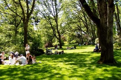 #4-Fave place to walk- Hendricks Park, Eugene, OR #readypac and #fit&fresh