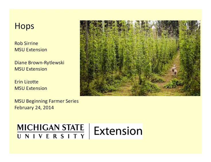 MSU Hops Webinar Slides, 2/24/14