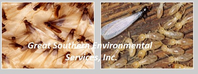 Palm Beach Gardens Bed Bug Exterminator