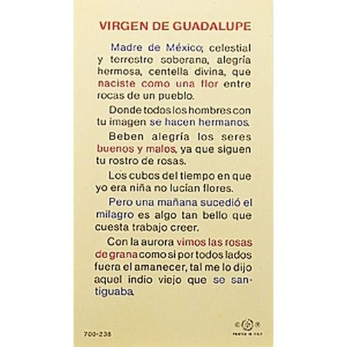 Virgen de Guadalupe, Madre (Our Lady of Guadalupe) - Spanish Prayer Card | The Catholic Company