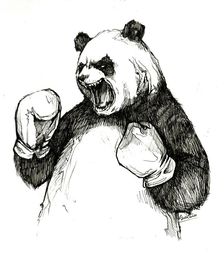 The Angry Boxing Panda by YLimes on deviantART