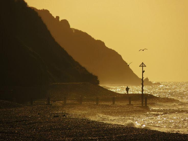Axmouth Devon   Flickr - Photo Sharing!
