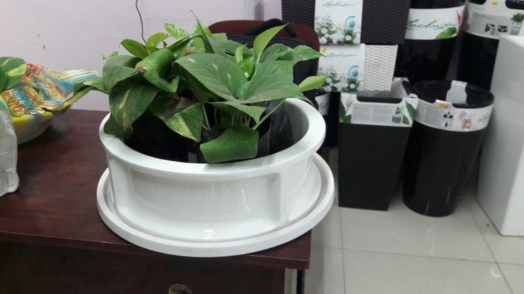 Fiber planters