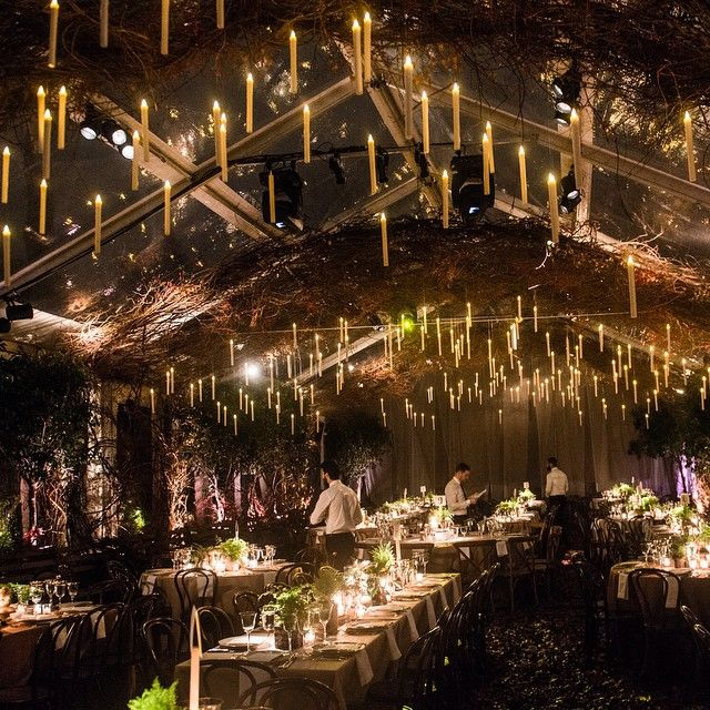 Harry Potter Lights O Kicking Off Our Collaboration With Baz Luhrmann And Catherine Martin This Wonderland When We Can T Eat At Freds