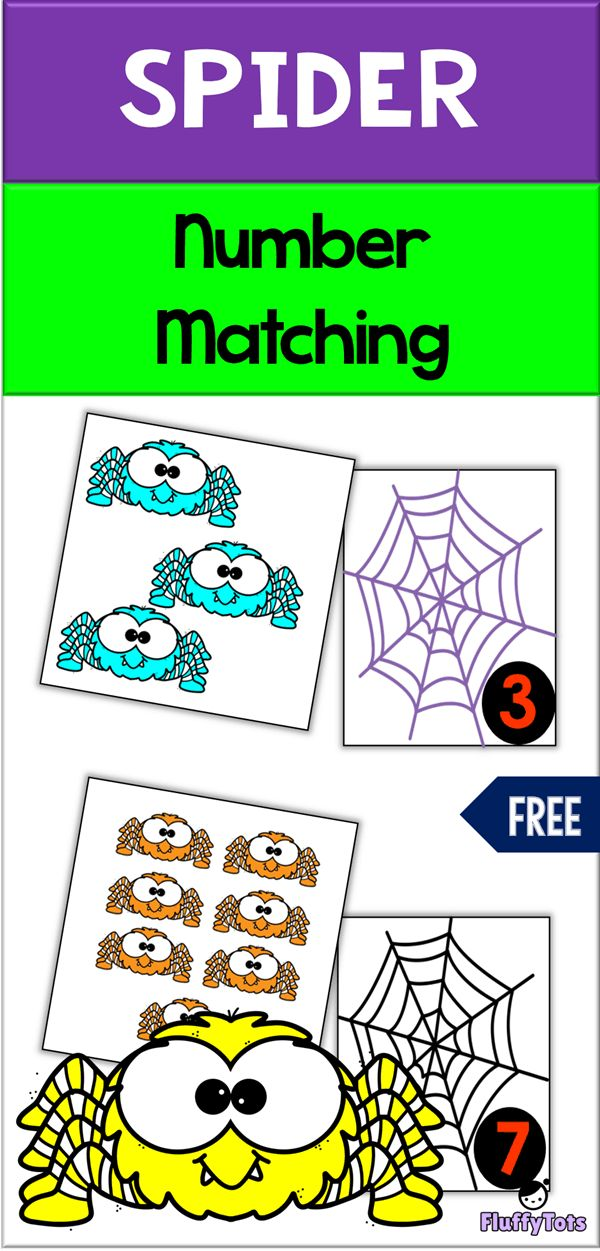 FREESpider Number Matching | Great for preschool a…