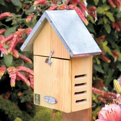 Ladybug House-Ladybugs can eat up to 100 aphids or plant lice a day!