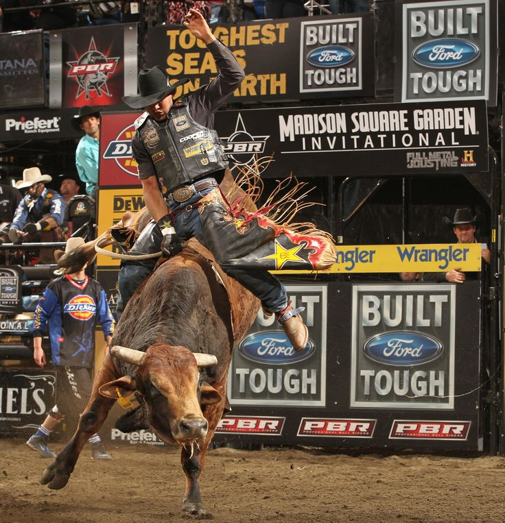 17 best images about bull riding rodeo cowboy rodeo fun - Bull riding madison square garden ...