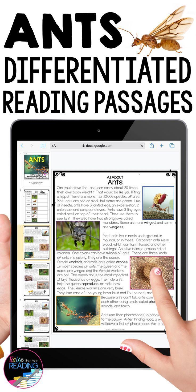 Reading Strategies Sphere Craft Reading Comprehension Strategies Activity Reading Comprehension Passages Reading Comprehension Strategies Reading Passages [ 1471 x 736 Pixel ]