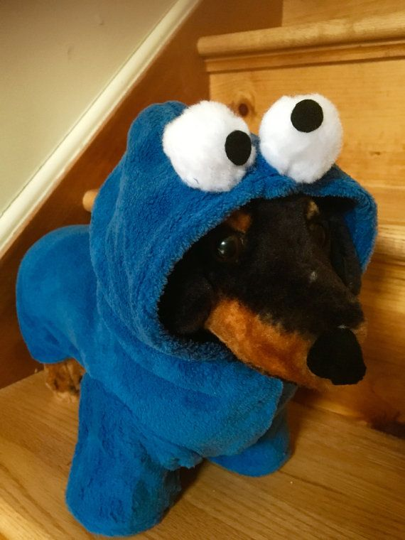 Best 25+ Cookie monster costumes ideas on Pinterest ...