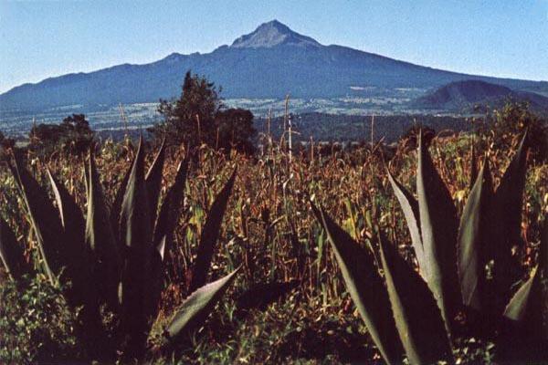 La Malinche (dormant) Mexico