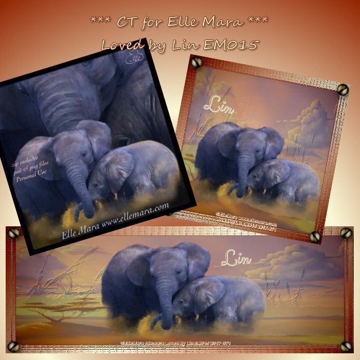 The Elephants - Tube at www.ellemara.com