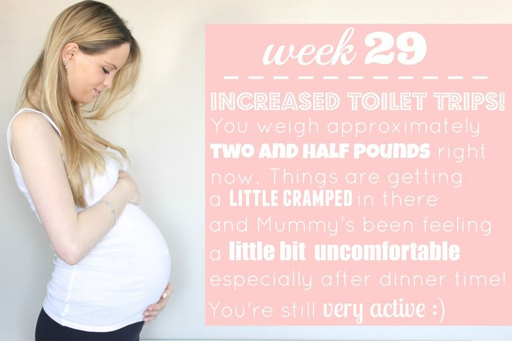 29 Week Pregnancy Update - www.bump-to-baby.com