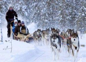 Husky tour in Lapland by AuroraXplorer