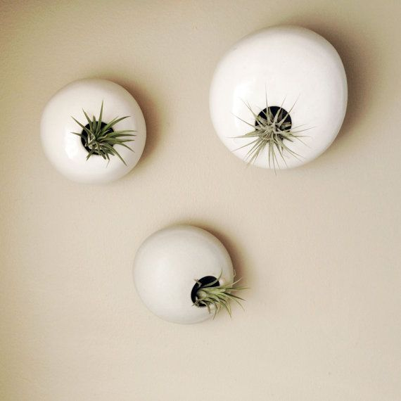 MADE TO ORDER  - Three Hanging Wall Planter Air Plant Pods - River Rock Inspired Ceramic Wall Installation