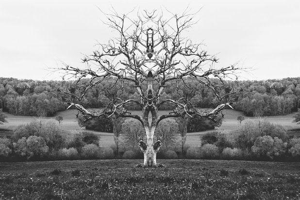 """Rorschach Photography"" by Mathieu Piranda | http://ineedaguide.blogspot.com/2015/01/mathieu-piranda.html #photography"