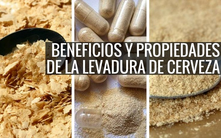 Uno de los principales componentes de la levadura de cerveza es la proteína. Su concentración es muy alta y eso es muy importante para el organismo..
