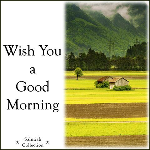 Salmiah Collection: Good Morning Wish 28: Wish you a good morning