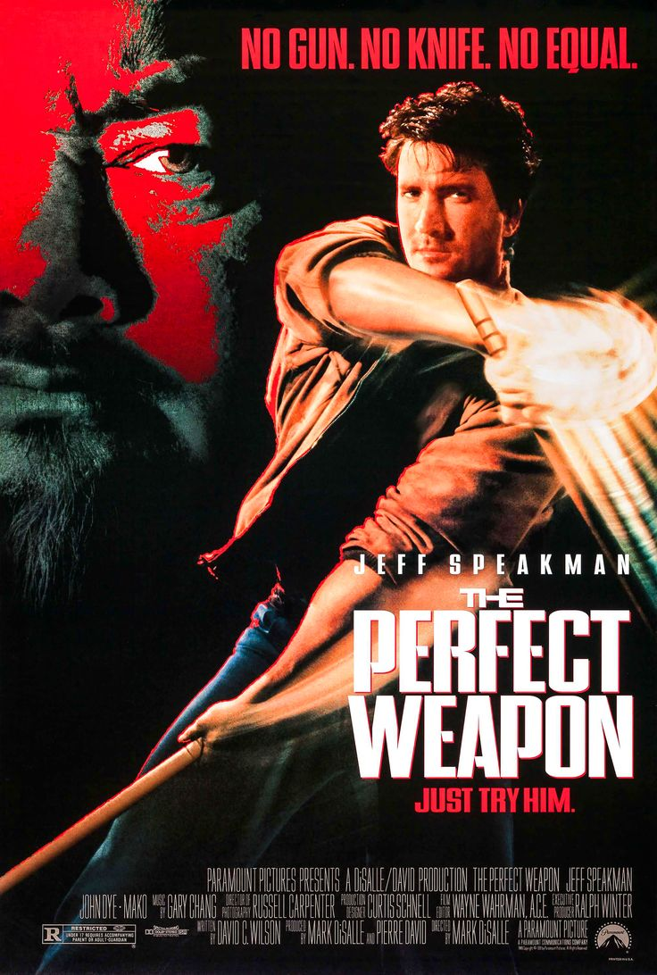 The Perfect Weapon Jeff Speakman 90 S Movie Poster Art Repin 90s Action Movies Thriller Movie Movie Posters