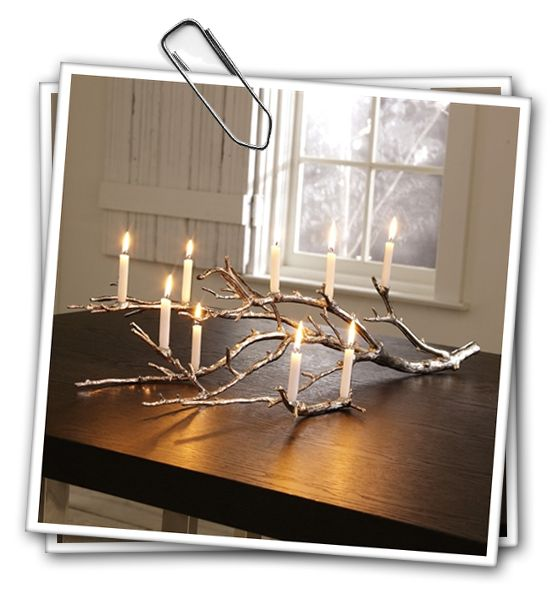 Something to do with all of those branches in my yard!