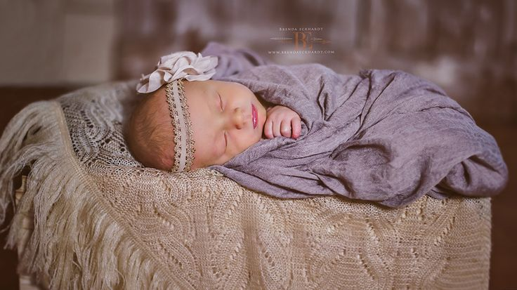 Baby baby photographer newborn photographer newborn photography brendaeckhardt com sun