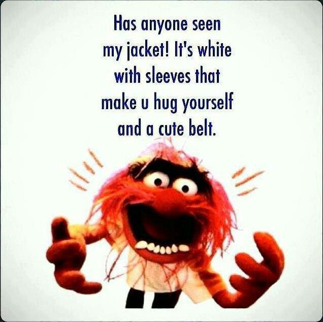 39 Best Muppet Quotes Lol Images On Pinterest: 61 Best Beaker Muppetshow Images On Pinterest