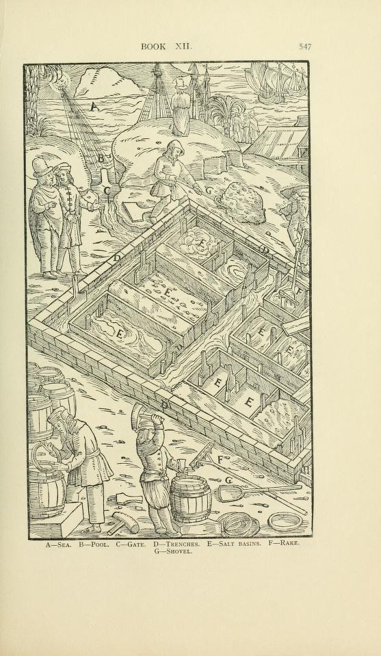 Georgius Agricola De re metallica : Agricola, Georg, 1494-1555