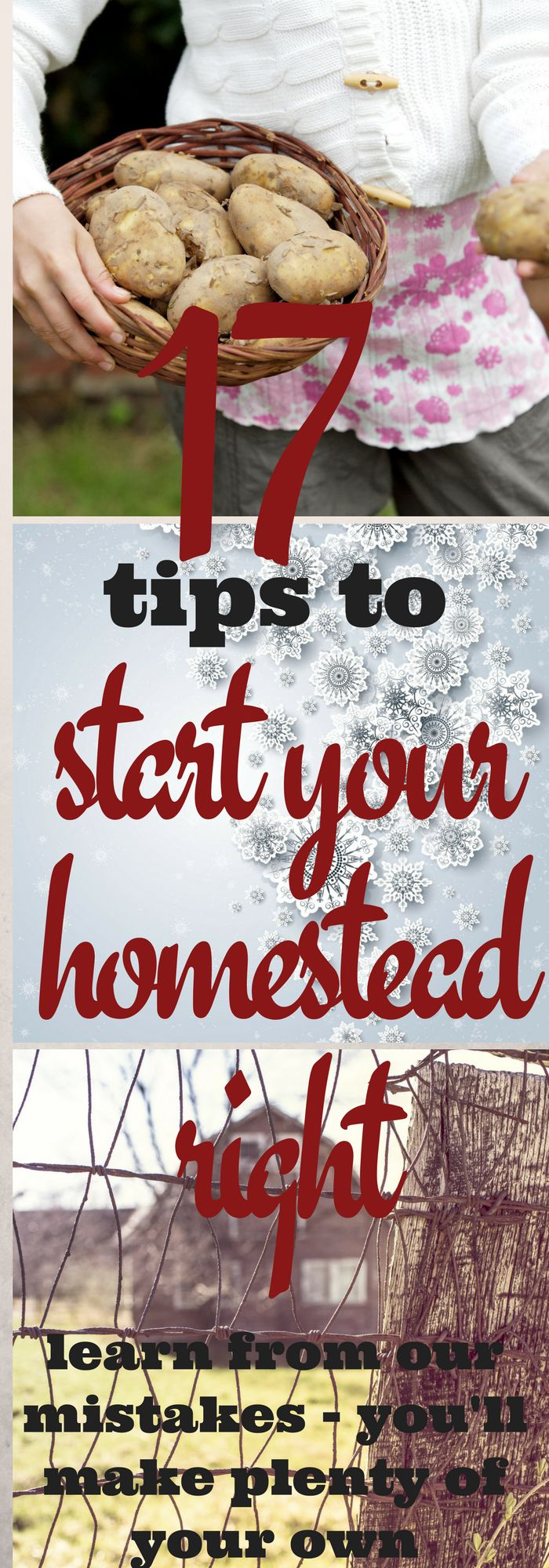 There are plenty of mistakes to make when setting up a homestead. Learn from ours - you'll make plenty of your own - and get your homestead off on the right foot