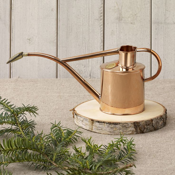 34 best Indoor Watering Cans images on Pinterest Watering cans