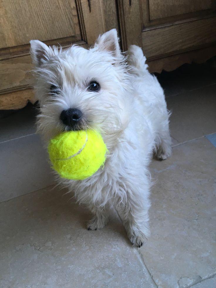 Play ball ❣️