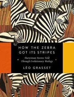How the Zebra Got Its Stripes: Darwinian Stories Told Through Evolutionary Biology 1st Edition free download by Léo Grasset Barbara Mellor ISBN: 9781681774145 with BooksBob. Fast and free eBooks download.  The post How the Zebra Got Its Stripes: Darwinian Stories Told Through Evolutionary Biology 1st Edition Free Download appeared first on Booksbob.com.
