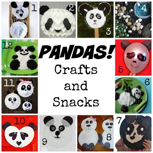 Panda facts, books, crafts, videos, and lesson plans that help kids learn about giant pandas from China!