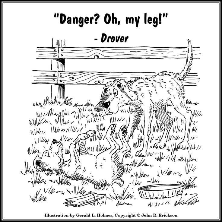 And a word from Drover... Hank the Cowdog