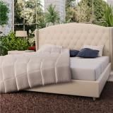 New Brand  Queen Size Fabric Frame Bedroom Furniture Bed Color Beige