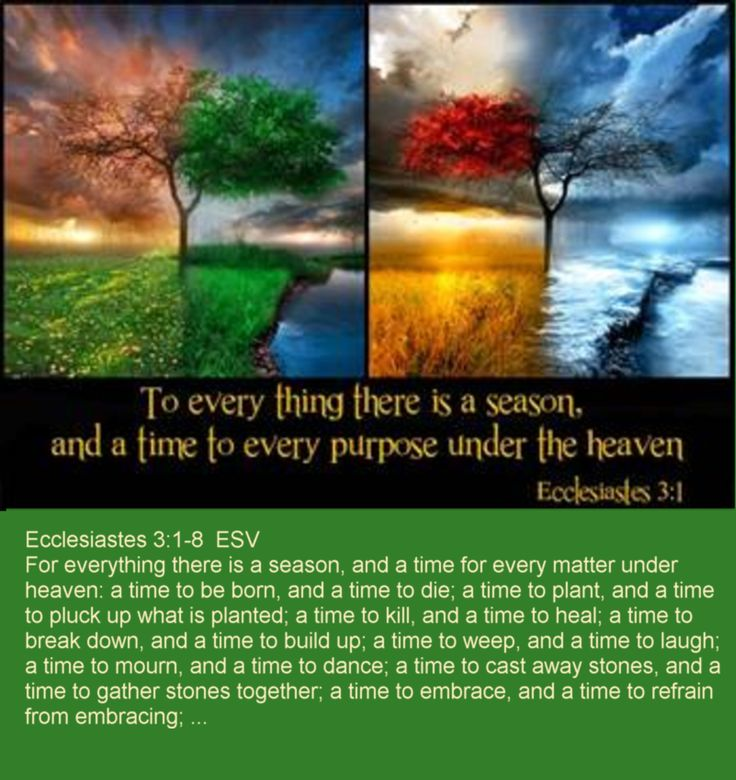 ecclesiastes 318 esv for everything there is a season