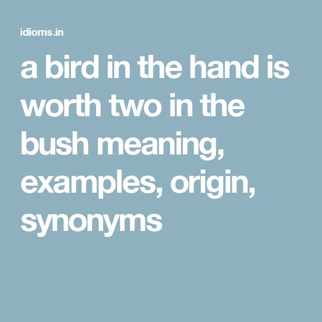 a bird in the hand is worth two in the bush meaning, examples, origin, synonyms